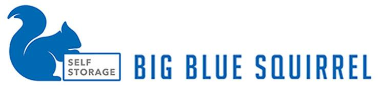 big blue squirrel logo