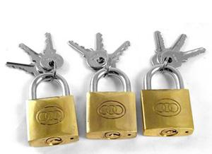 big blue squirrel padlocks